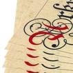 Urkunde A3 Urkundenpapier Elefantenhaut zum selbst bedrucken 160g