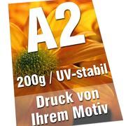 Plakate DIN A2 200g Bilderdruck 4/0-farbig UV-stabil Poster