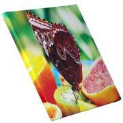 Keilrahmenbild / Leinwanddruck von Ihrer Datei 2cm Rahmenstärke
