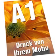 Plakate DIN  A1 135g Bilderdruck 4/0-farbig