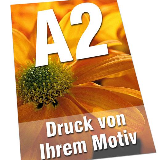 Plakate DIN  A2 135g Bilderdruck 4/0-farbig