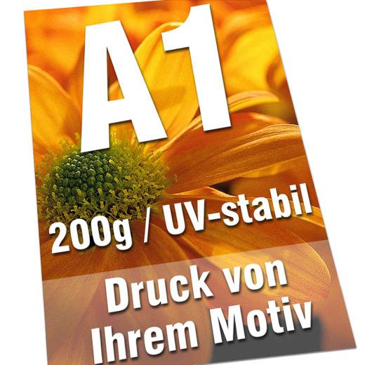 Plakate DIN A1 200g Bilderdruck 4/0-farbig UV-stabil Poster