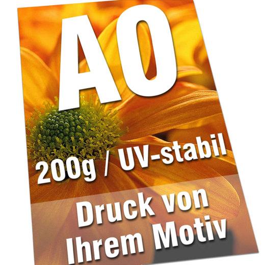 Plakate DIN A0 200g Bilderdruck 4/0-farbig UV-stabil Poster